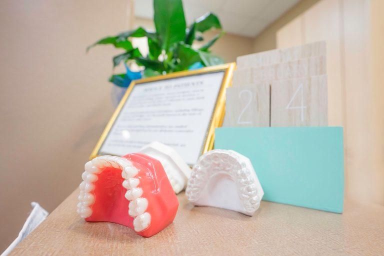dental models of teeth